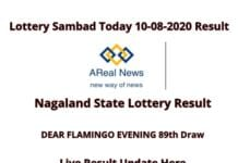 Nagaland State Lottery Today Result 9_08_2020 _ DEAR FLAMINGO EVENING 89th Draw